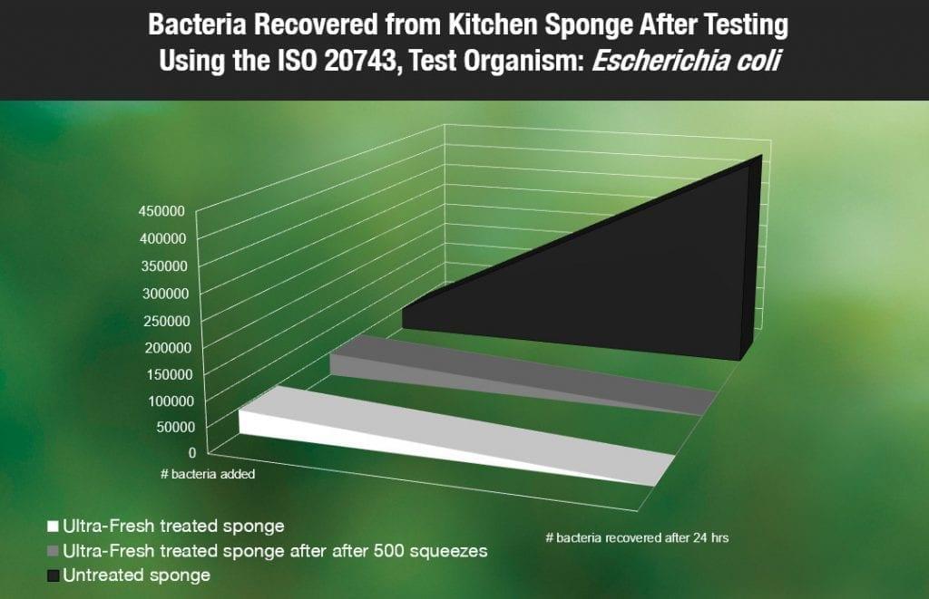 Does antibacterial kitchen sponge work?