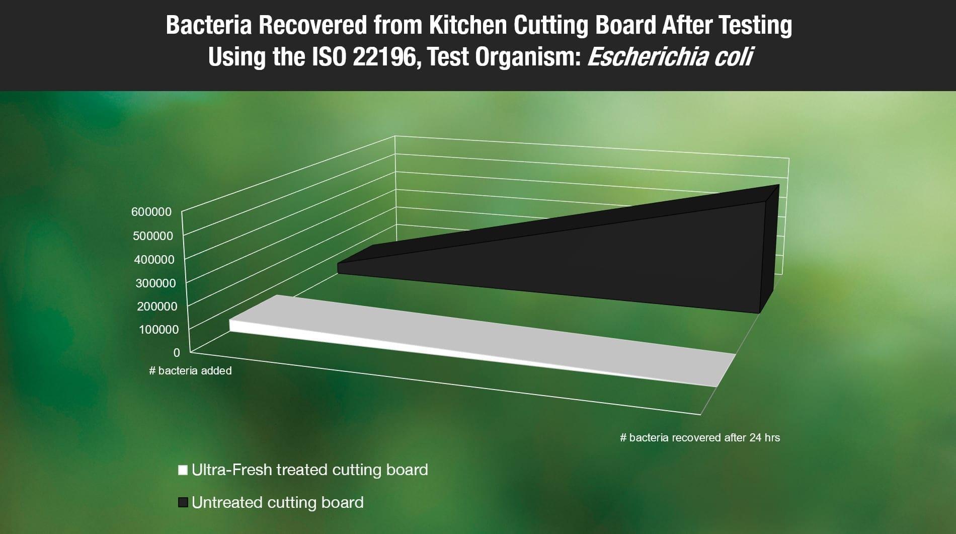 Bacteria growing on cutting board